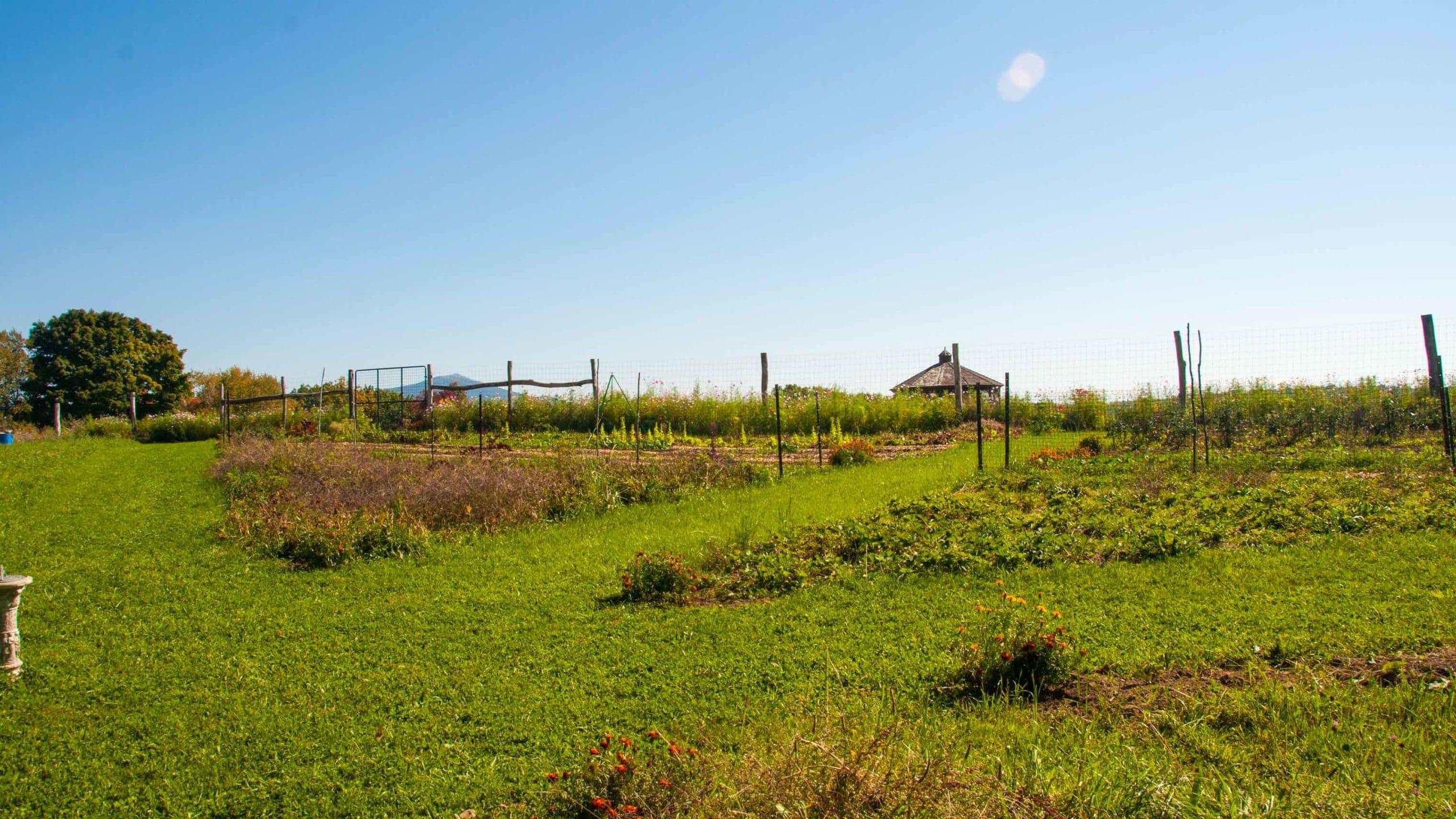 A view of the camp glen brook garden.