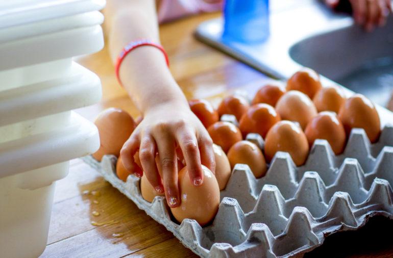 A camper putting eggs in a carton.