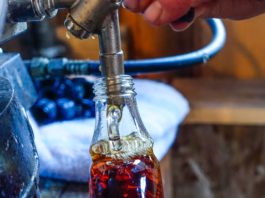 The process of creating maple syrup.