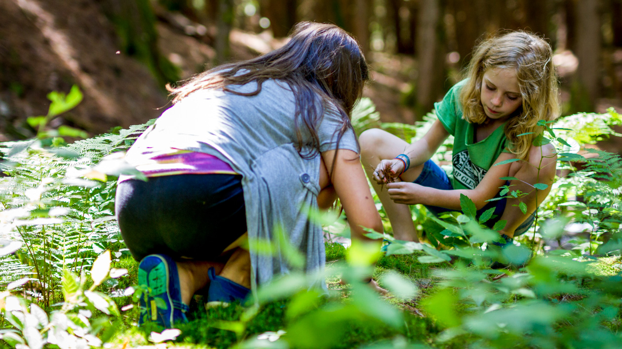 Campers examining the forest plants.