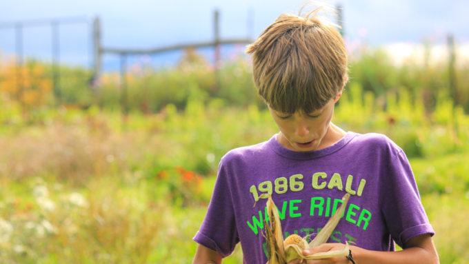A student shucking corn.