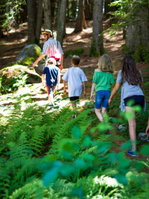 Campers walking through the woods during the summer.